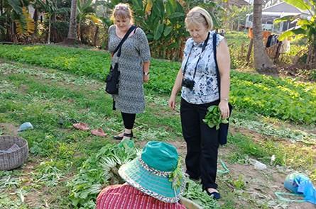 guest-visiting-farm