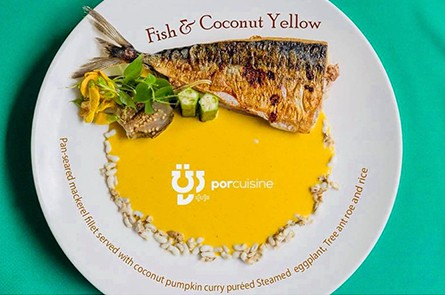 Fish Coconut Yellow